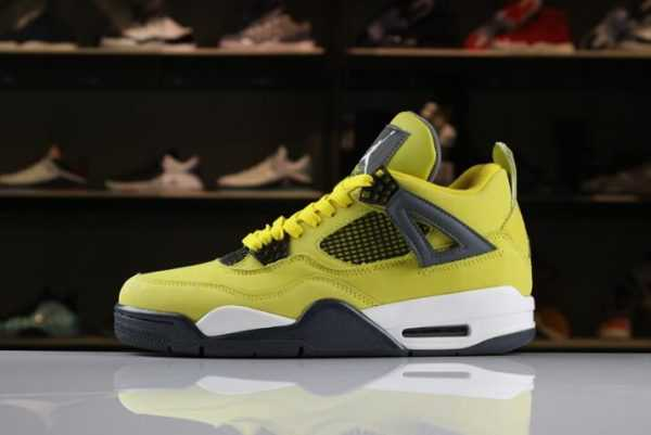 "2018 Air Jordan 4 ""Lightning"" Tour Yellow/Dark Blue-Grey-White 314254-702"